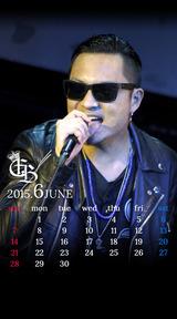 Calendar 2015.06
